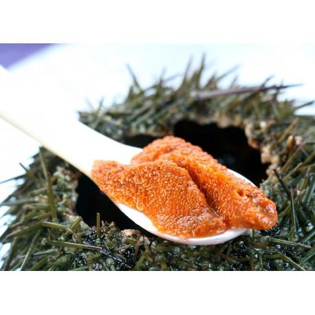 Corail d'oursin - Pot de 90g