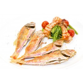 Costal red mullet - 250g