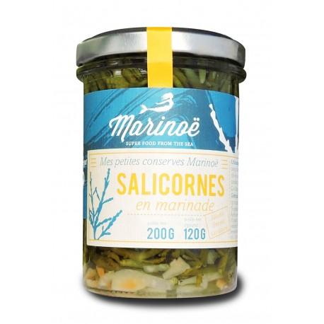 Salicorne en Marinade - Marinoë