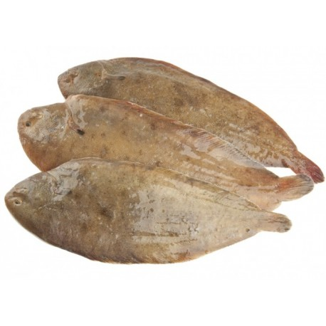 Sole - whole & emptied - 250g