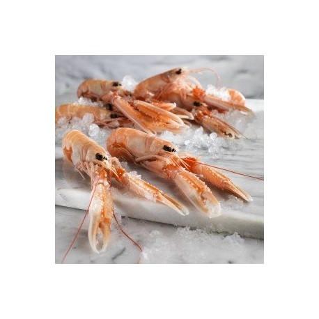 Langoustines Grosses Crues - Décongelées - 1kg