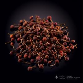 Poivre entier sauvage Voatsiperifery rouge de Madagascar