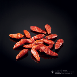 Piment rouge pili pili