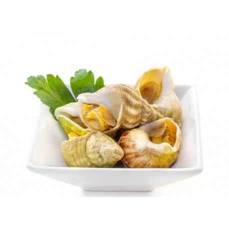 Cooked Whelks - 500g