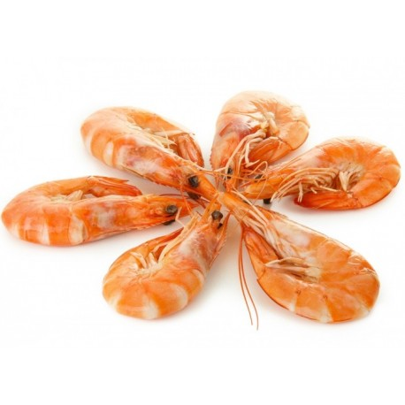 Pink Shrimps - Cooked - 1kg