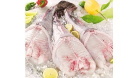Monkfish tail - 750g