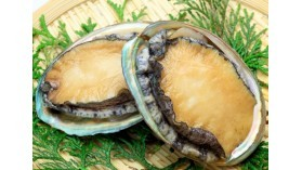 Wild Abalone - Ready to cook - 1kg