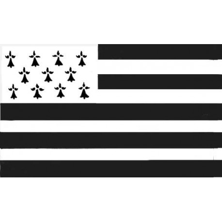 Petit drapeau breton en polyester avec anneaux - 90 x 60 cm
