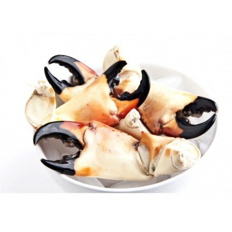 Crab claws - Cooked - Batch of 1kg