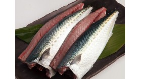 COSTAL MACKEREL FILLETS - 400gr