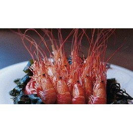 Red Shrimps - From Brittany - 200g