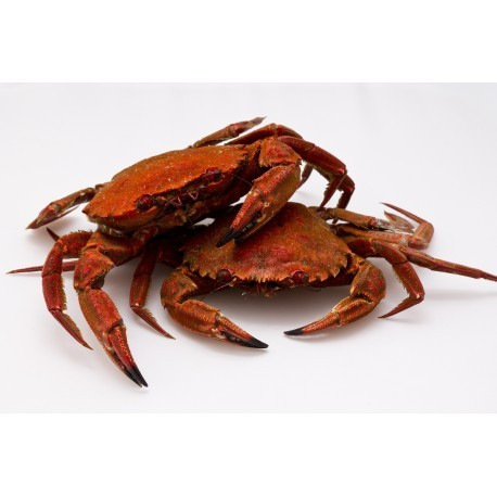 Velvet Swimming Crab - Cooked - 1kg
