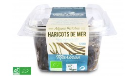 Haricot de mer frais BIO - Marinoë