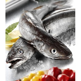 Hake whole guted fish- 2kg