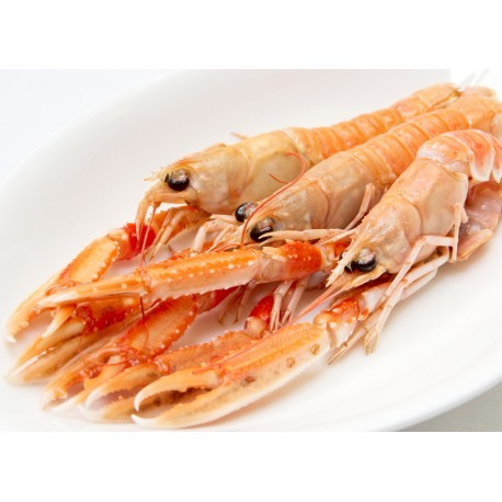 Scampi - From Brittany - Cooked 500g