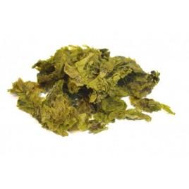 Laitue de mer déshydratée en feuilles - BIO - Les Algues Gastronomes