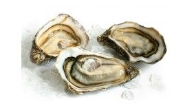 Hollow oysters