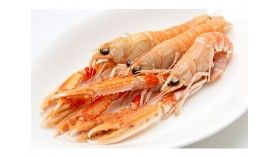 Scampi From Brittany