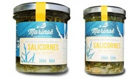 Salicornes et haricots de mer