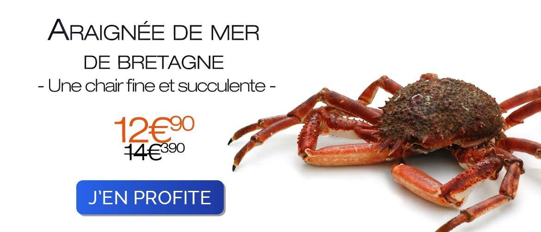 Araignée de mer cuite - 1kg 2021